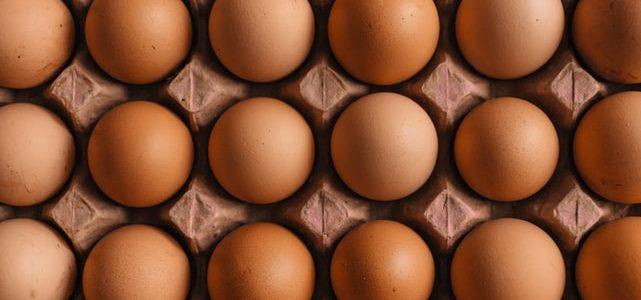 Por qué comprar huevos frescos ecológicos